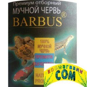 BARBUS Мучной червь отборный 6л (ведро)
