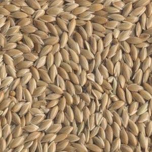 Кеша корм канареечное семя 250гр.