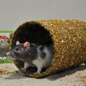 Little One Туннель «Вкусная лазейка»