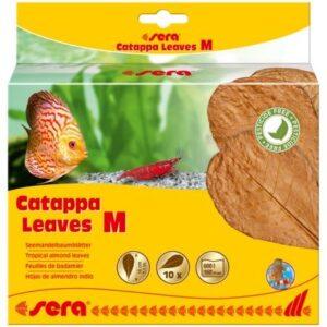 SERA Листья индийского миндаля Catappa Leaves M 18 см (10шт)